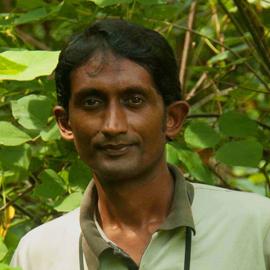 Devaka Jayamanne